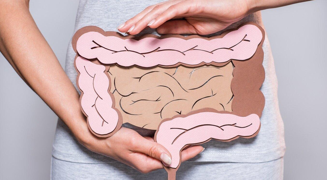 Здоровий кишечник — здоровий ти